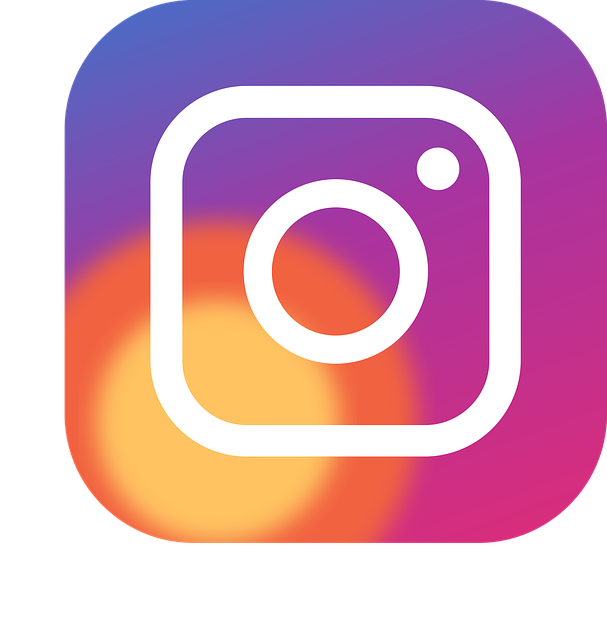 Can Paid Followers Boost Your Instagram Account? Expert Online PR Pros Say; Yes!
